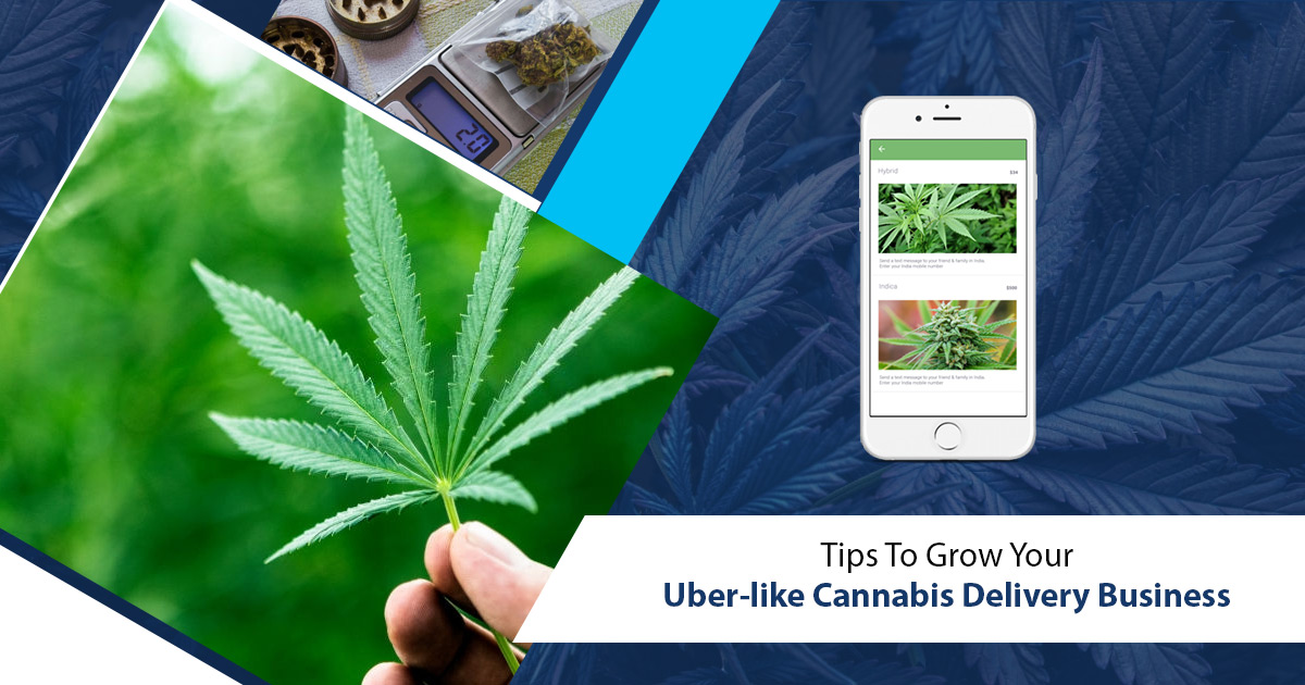 Appdupe_Cannabis_Delivery_App_Article_200KB